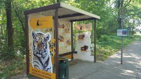 Nächste Station Wildkatzenzentrum